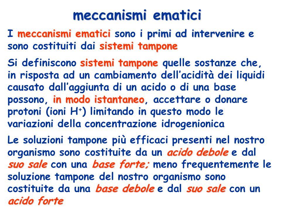 meccanismi ematici I meccanismi ematici sono i primi ad intervenire e sono costituiti dai sistemi tampone.
