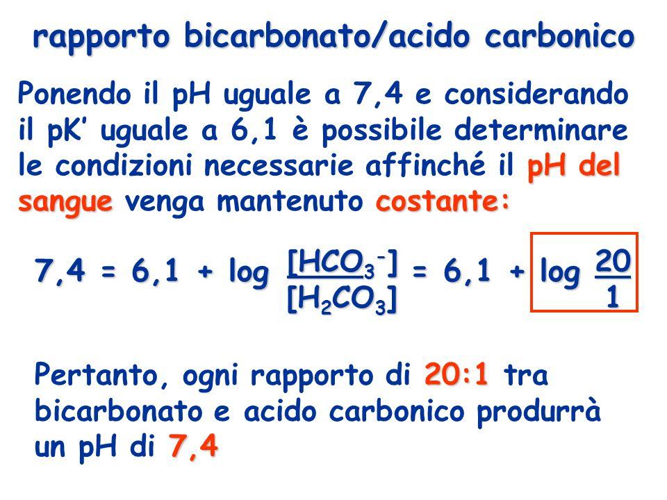 rapporto bicarbonato/acido carbonico