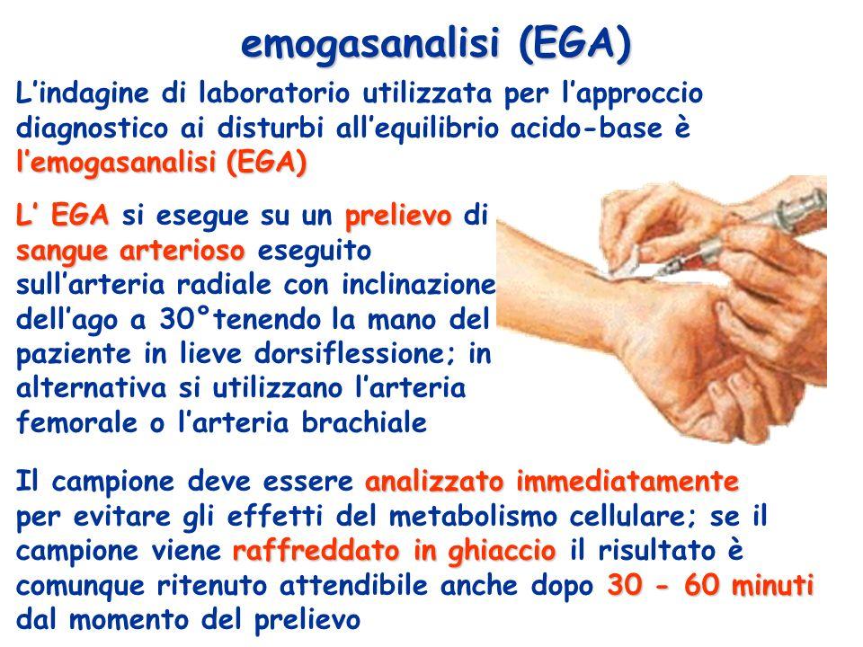 emogasanalisi (EGA) L'indagine di laboratorio utilizzata per l'approccio diagnostico ai disturbi all'equilibrio acido-base è l'emogasanalisi (EGA)