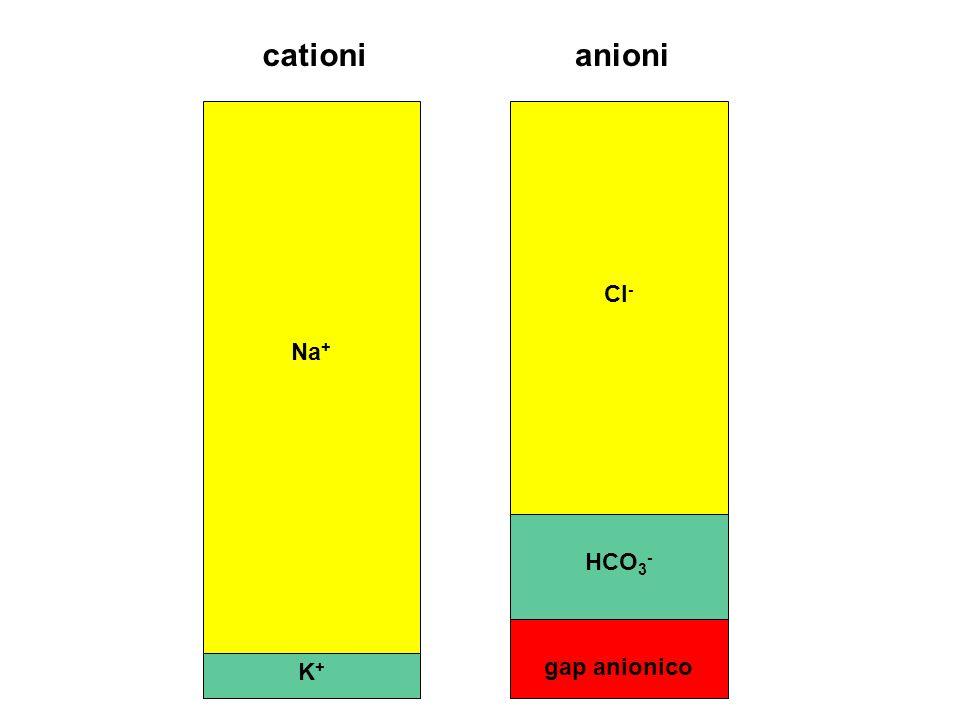 cationi anioni Na+ Cl- HCO3- gap anionico K+