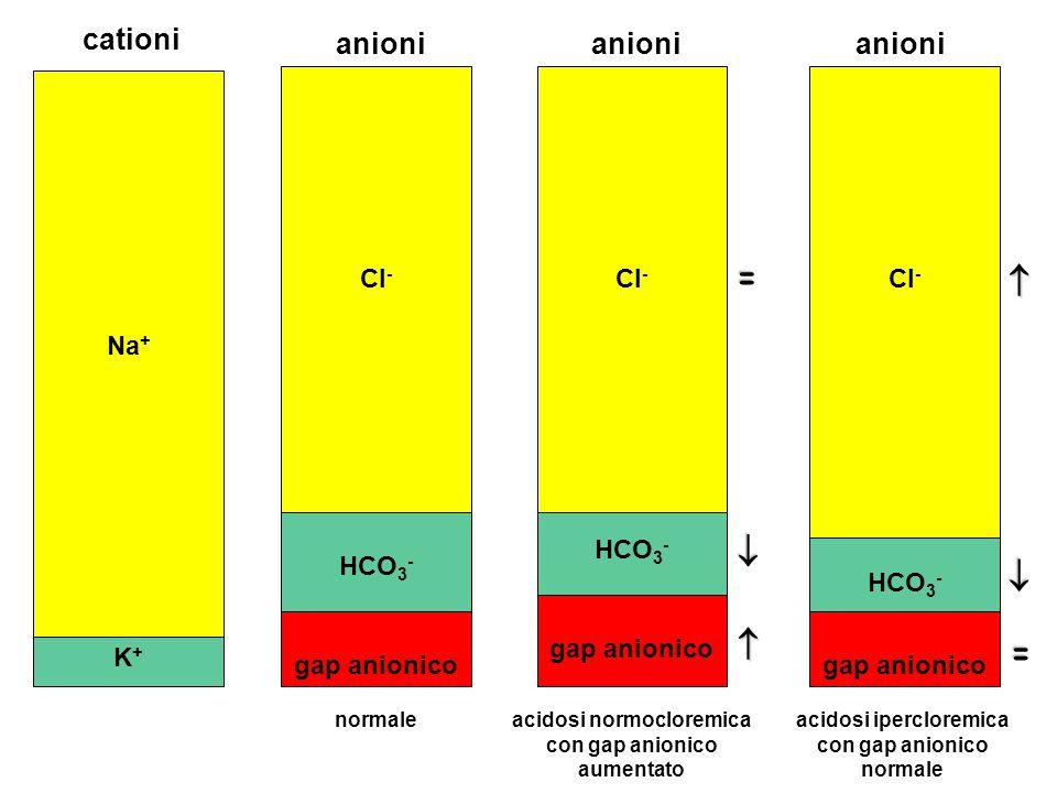 =     = cationi anioni anioni anioni Na+ Cl- Cl- Cl- HCO3- HCO3-