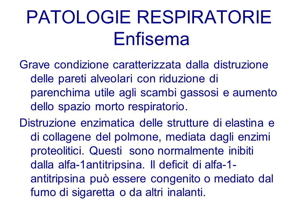 PATOLOGIE RESPIRATORIE Enfisema