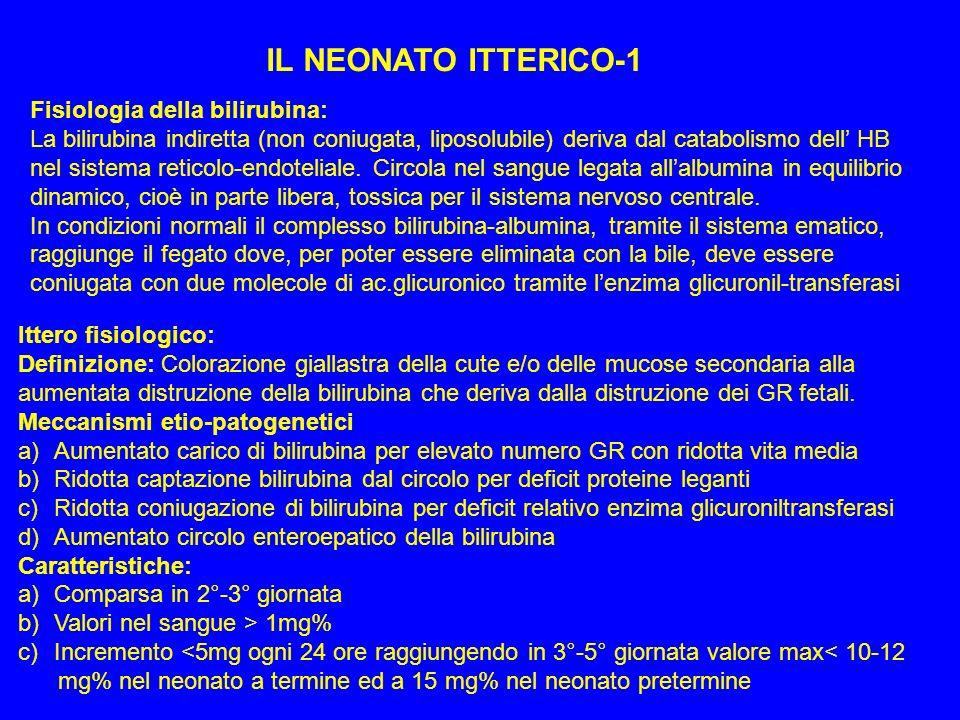 IL NEONATO ITTERICO-1 Fisiologia della bilirubina: