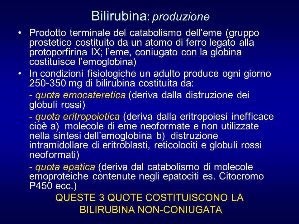 Bilirubina: produzione