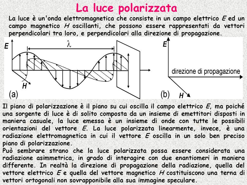La luce polarizzata