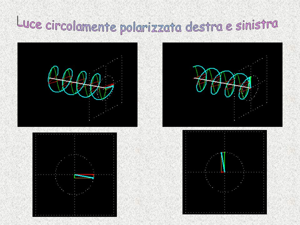 Luce circolamente polarizzata destra e sinistra