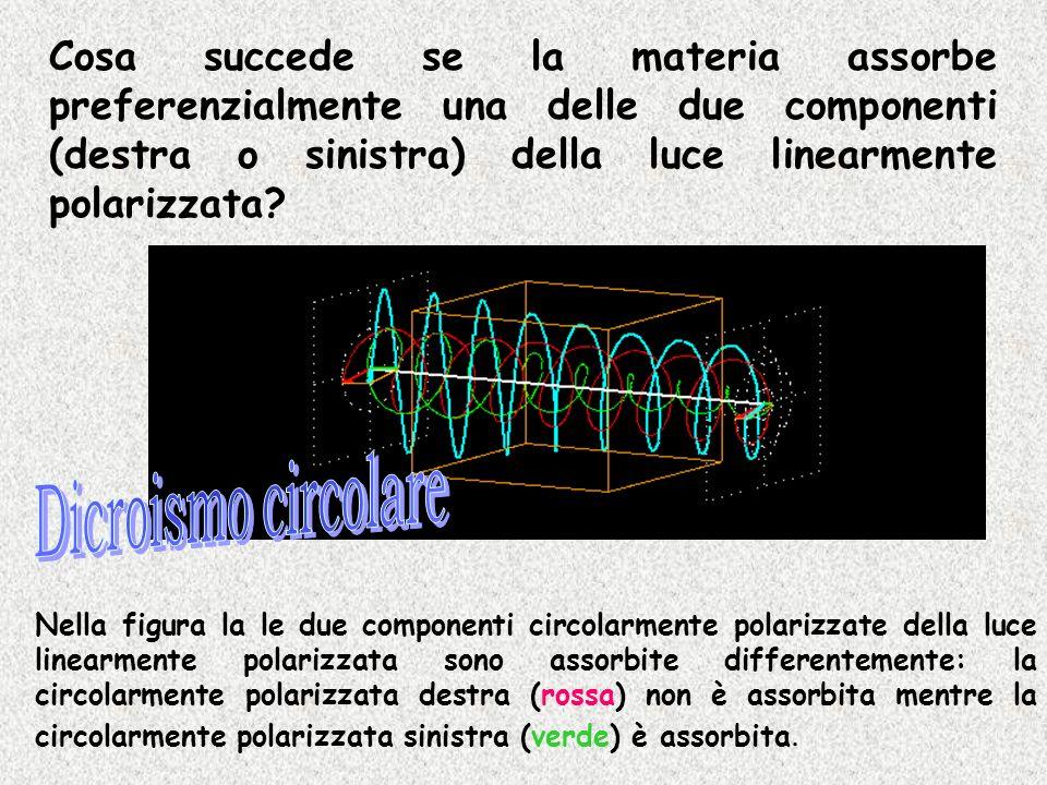 Cosa succede se la materia assorbe preferenzialmente una delle due componenti (destra o sinistra) della luce linearmente polarizzata