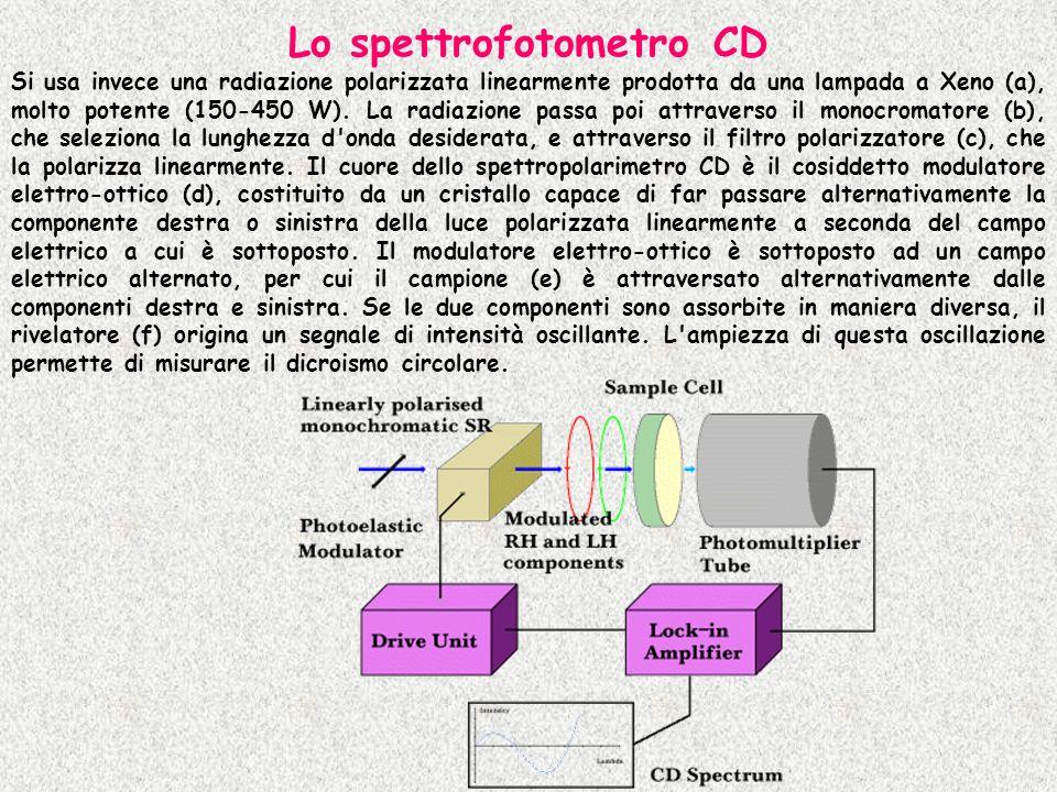 Lo spettrofotometro CD