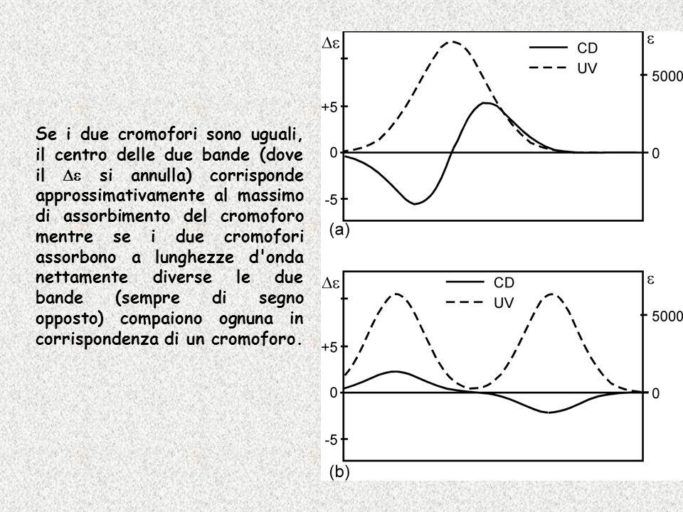 Se i due cromofori sono uguali, il centro delle due bande (dove il De si annulla) corrisponde approssimativamente al massimo di assorbimento del cromoforo mentre se i due cromofori assorbono a lunghezze d onda nettamente diverse le due bande (sempre di segno opposto) compaiono ognuna in corrispondenza di un cromoforo.