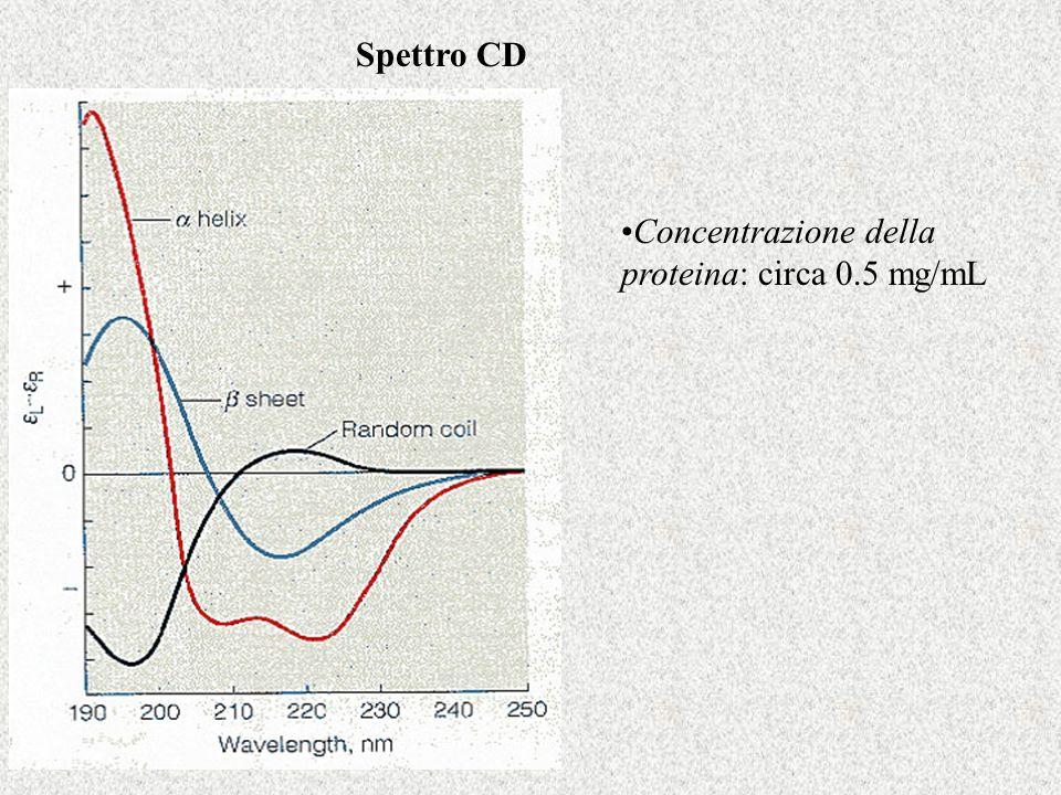 Spettro CD Concentrazione della proteina: circa 0.5 mg/mL