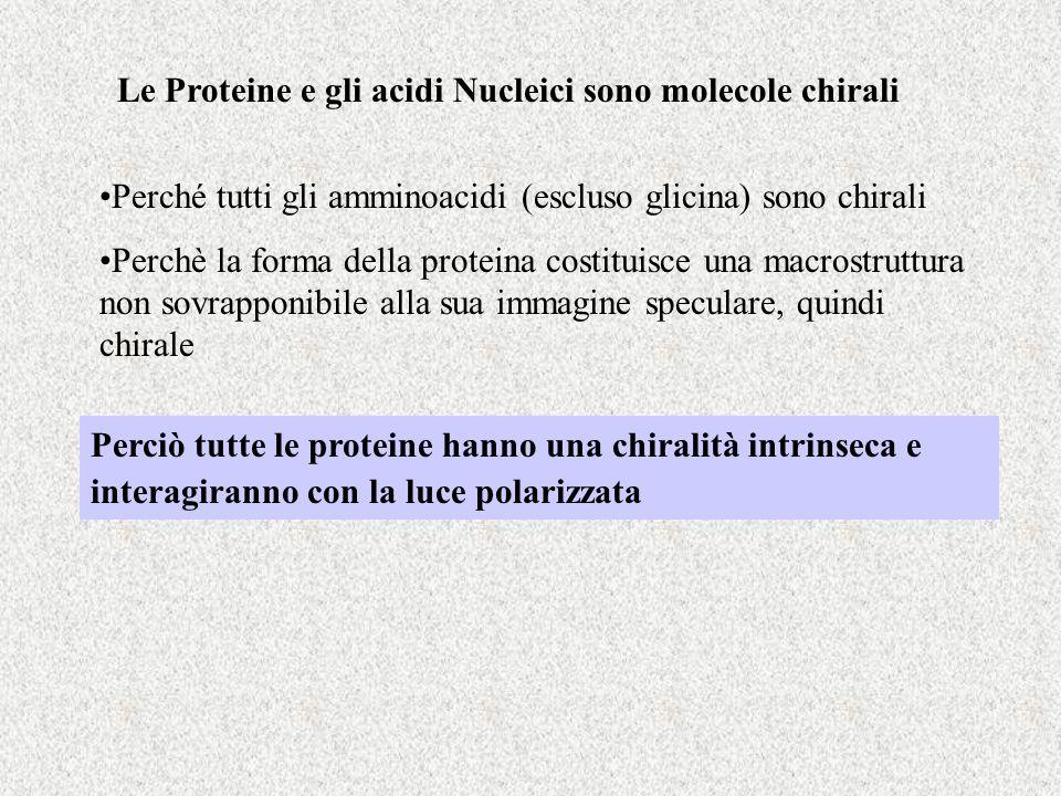 Le Proteine e gli acidi Nucleici sono molecole chirali