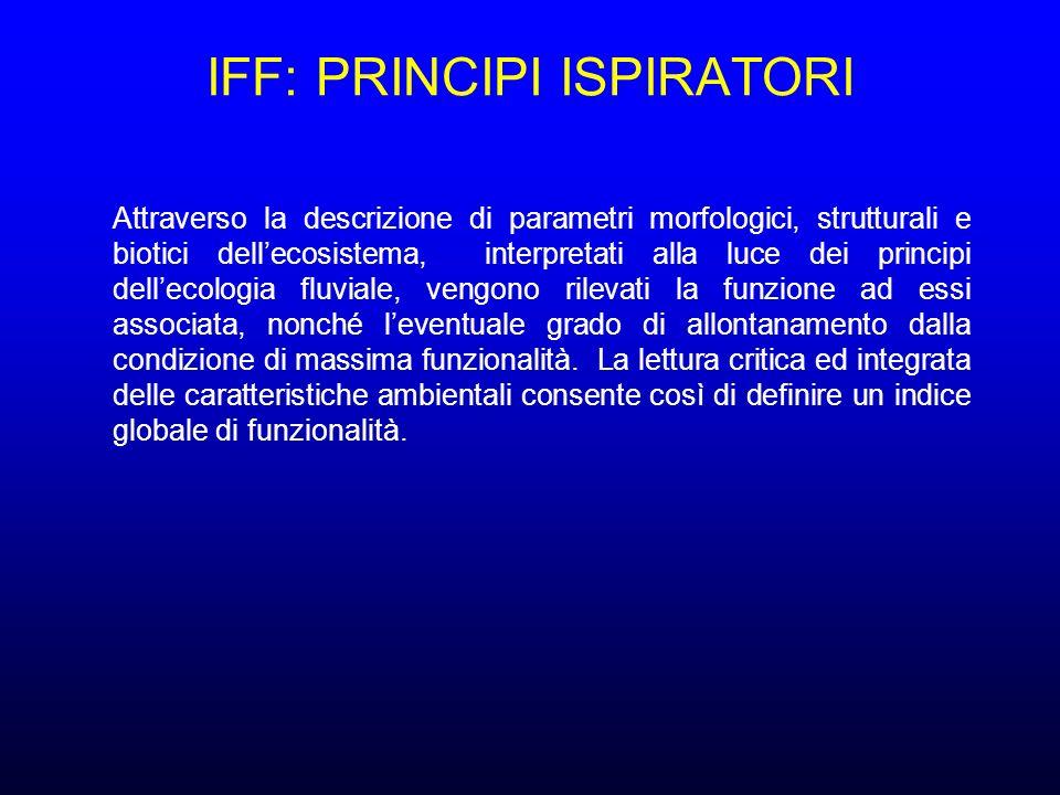 IFF: PRINCIPI ISPIRATORI