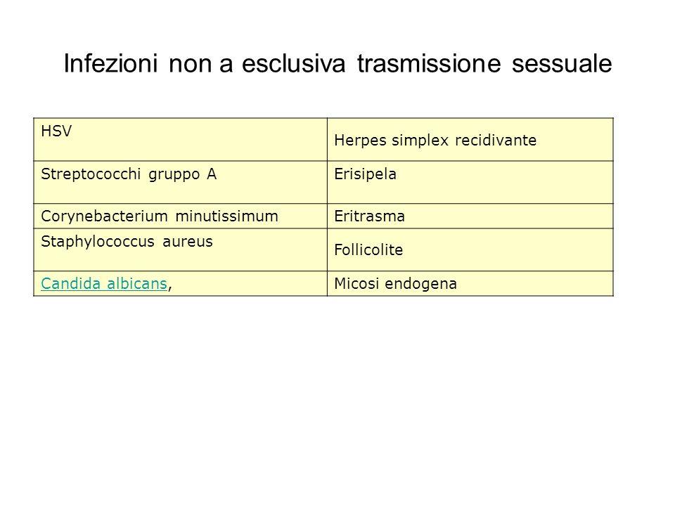 Infezioni non a esclusiva trasmissione sessuale