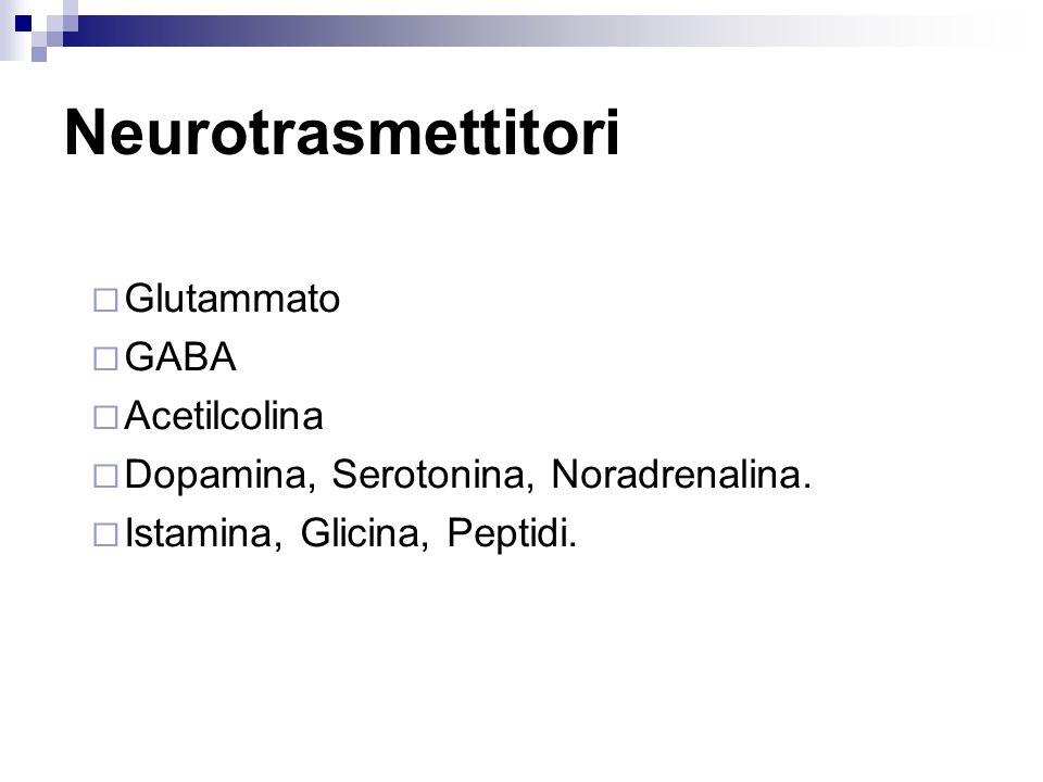 Neurotrasmettitori Glutammato GABA Acetilcolina