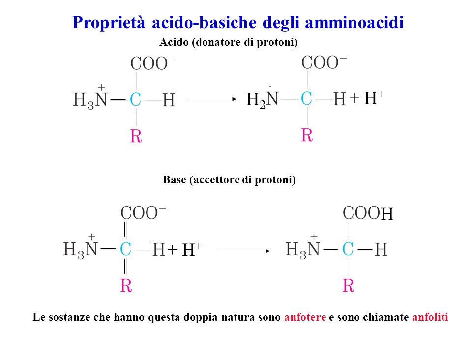 Proprietà acido-basiche degli amminoacidi