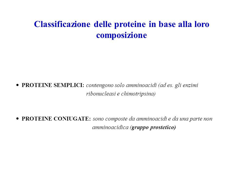 Classificazione delle proteine in base alla loro composizione