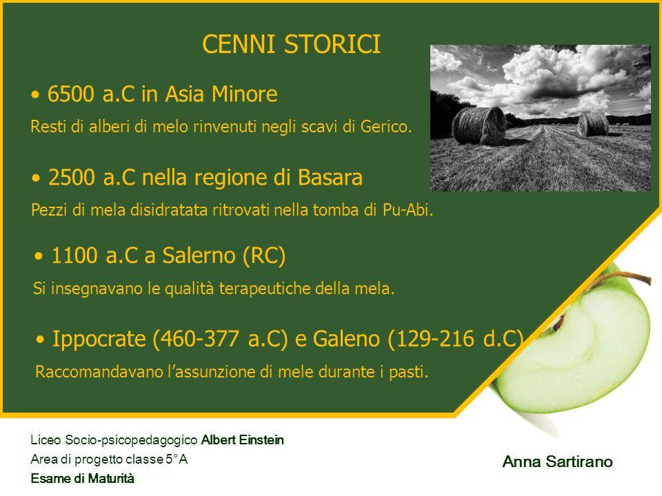 CENNI STORICI 6500 a.C in Asia Minore 2500 a.C nella regione di Basara