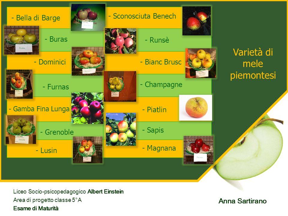 Varietà di mele piemontesi