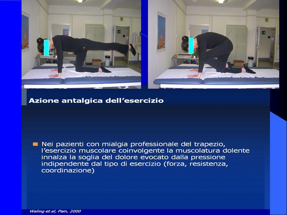 Diversi tipi di esercizio muscolare sono in grado di innalzare la soglia del dolore da stimolo meccanico.