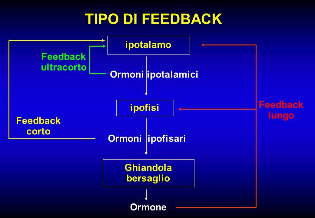 TIPO DI FEEDBACK ipotalamo Feedback ultracorto Ormoni ipotalamici