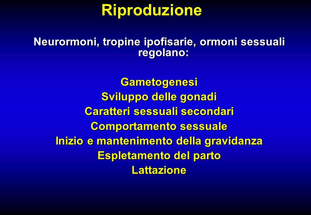 Riproduzione Neurormoni, tropine ipofisarie, ormoni sessuali regolano: