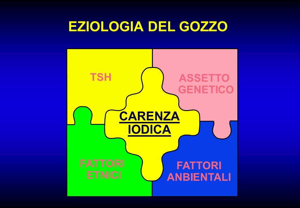 EZIOLOGIA DEL GOZZO CARENZA IODICA TSH ASSETTO GENETICO FATTORI