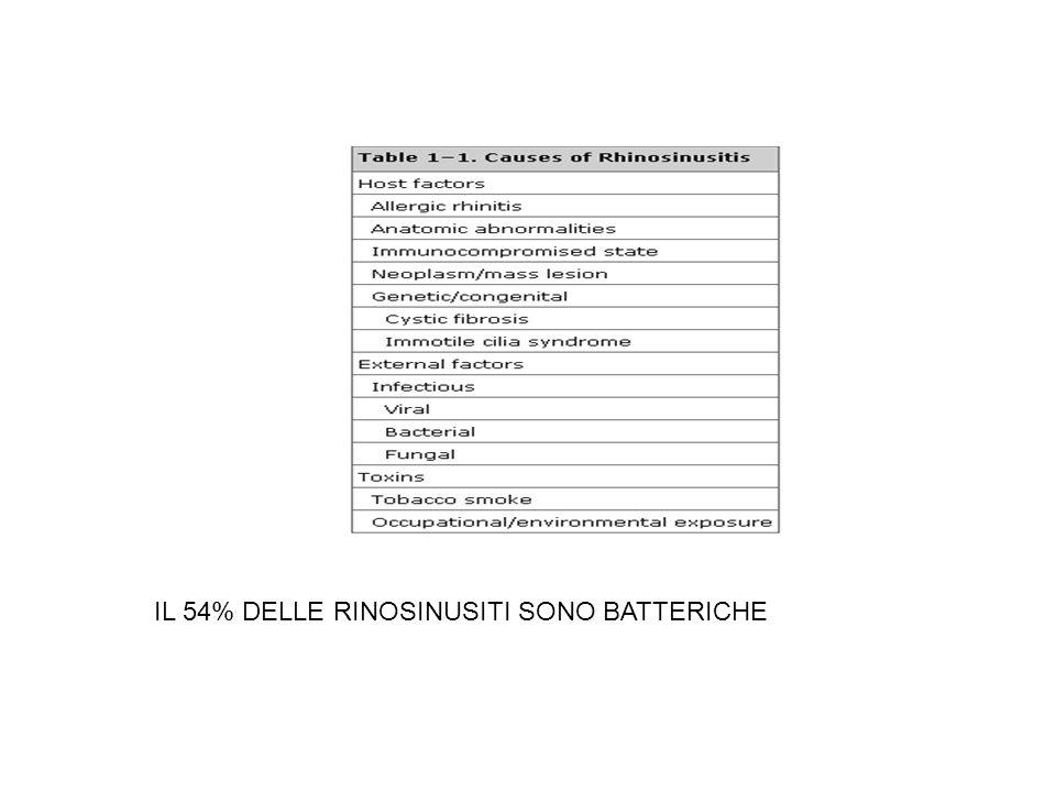 IL 54% DELLE RINOSINUSITI SONO BATTERICHE