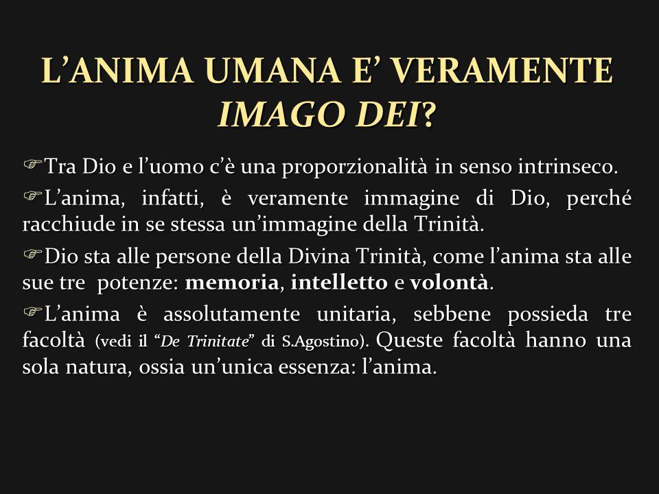 L'ANIMA UMANA E' VERAMENTE IMAGO DEI