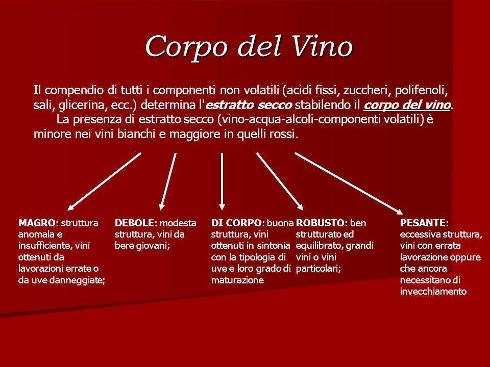 Corpo del Vino