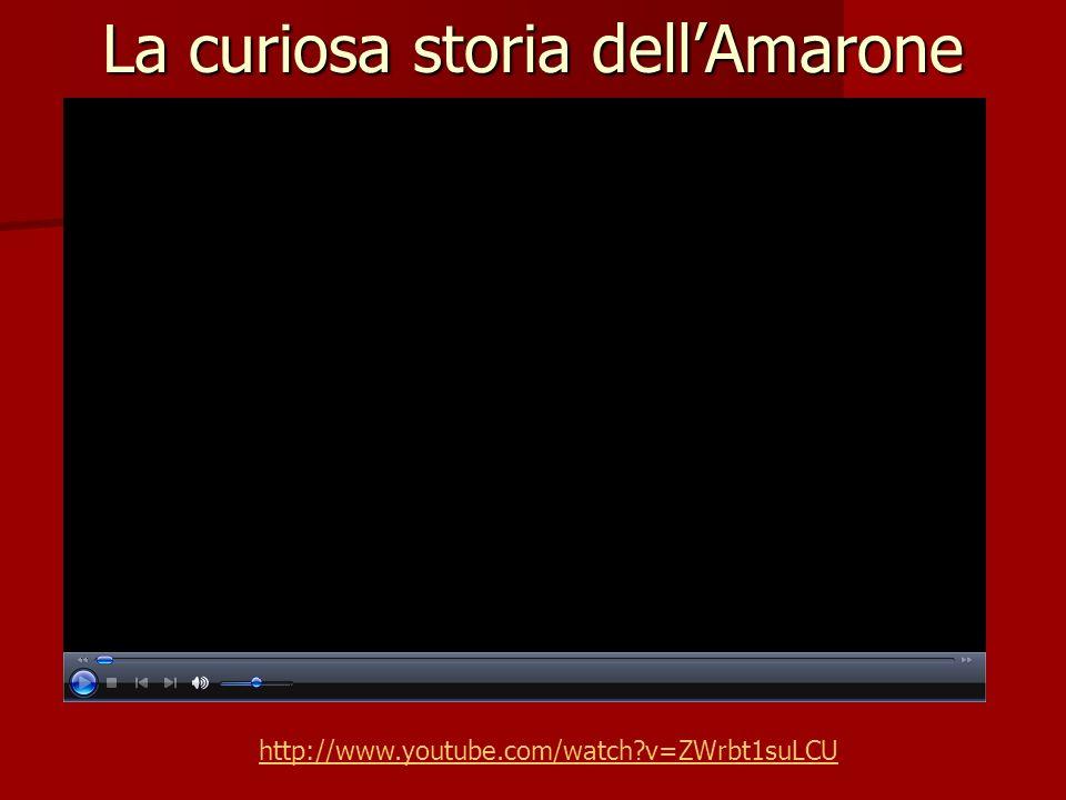 La curiosa storia dell'Amarone