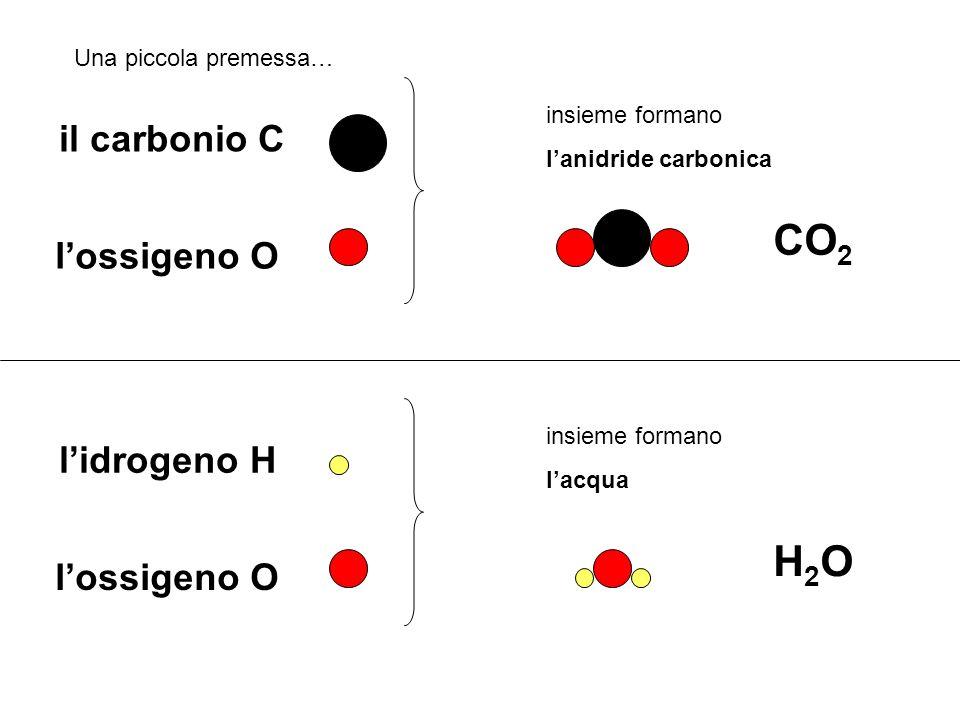CO2 H2O il carbonio C l'ossigeno O l'idrogeno H l'ossigeno O