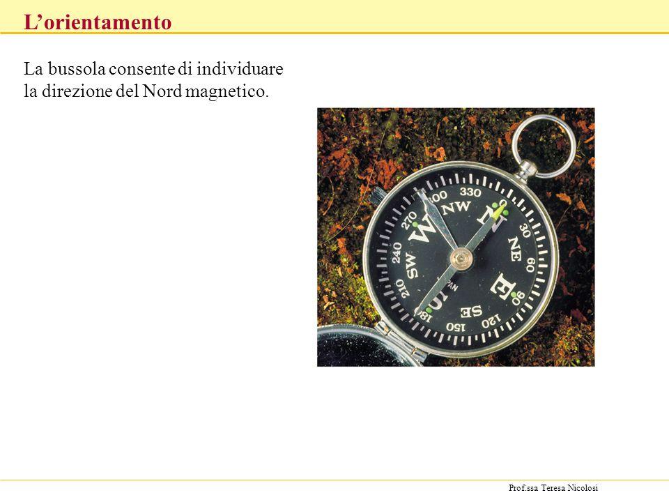 La bussola consente di individuare la direzione del Nord magnetico.
