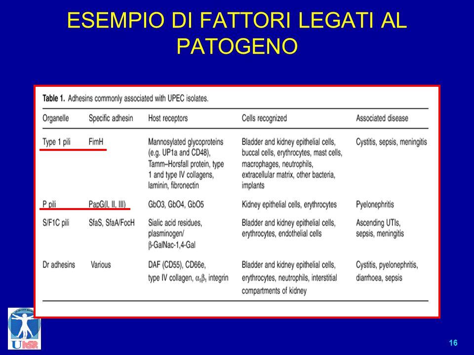 ESEMPIO DI FATTORI LEGATI AL PATOGENO