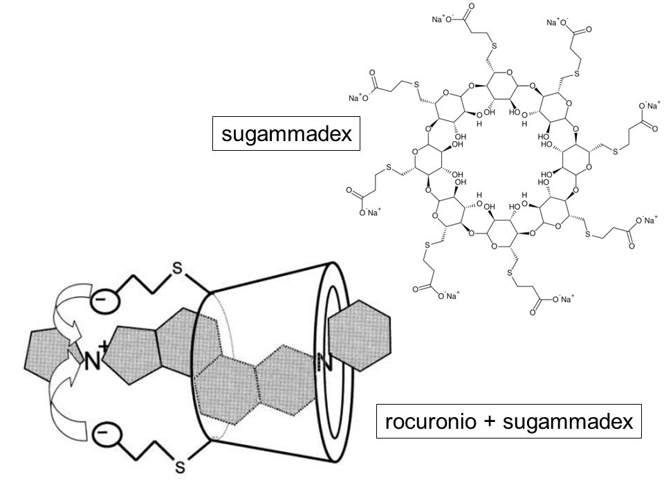rocuronio + sugammadex