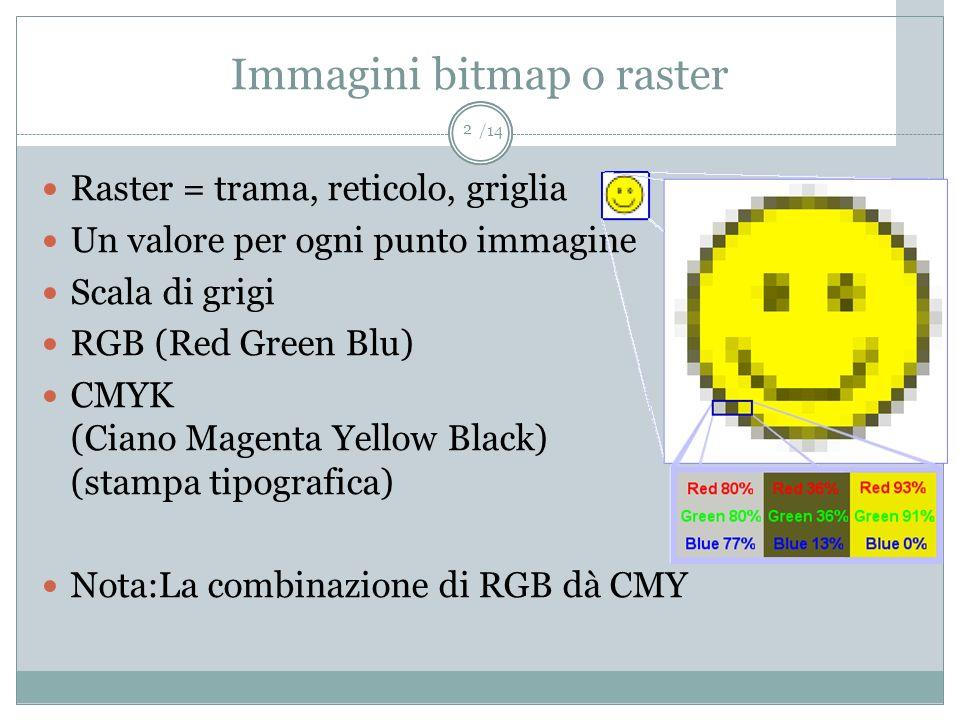 Immagini bitmap o raster