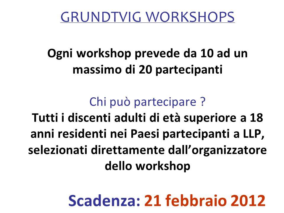 GRUNDTVIG WORKSHOPS Ogni workshop prevede da 10 ad un massimo di 20 partecipanti Chi può partecipare .