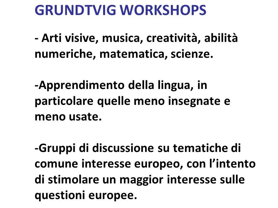 GRUNDTVIG WORKSHOPS - Arti visive, musica, creatività, abilità numeriche, matematica, scienze.