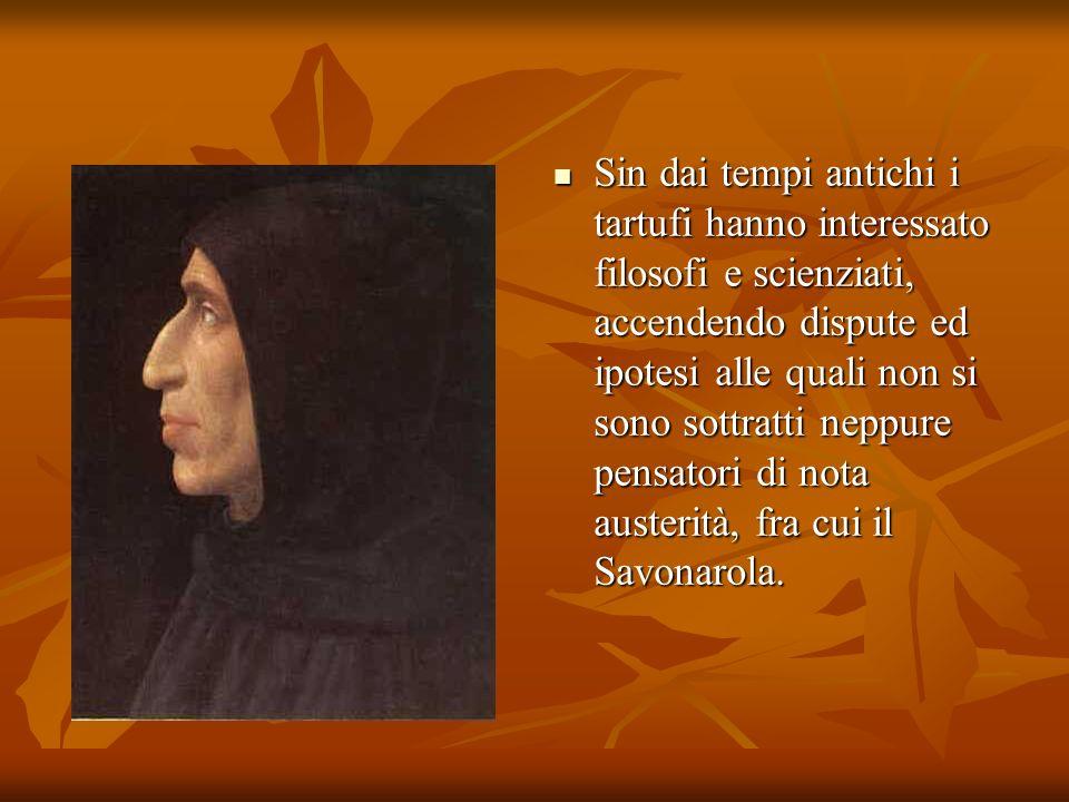 Sin dai tempi antichi i tartufi hanno interessato filosofi e scienziati, accendendo dispute ed ipotesi alle quali non si sono sottratti neppure pensatori di nota austerità, fra cui il Savonarola.