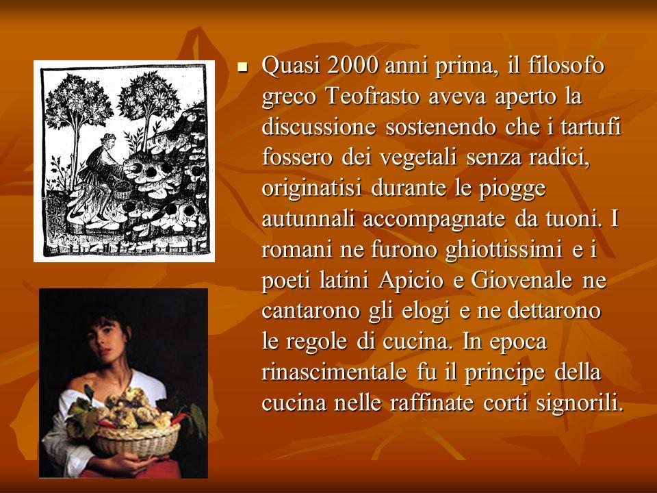 Quasi 2000 anni prima, il filosofo greco Teofrasto aveva aperto la discussione sostenendo che i tartufi fossero dei vegetali senza radici, originatisi durante le piogge autunnali accompagnate da tuoni.