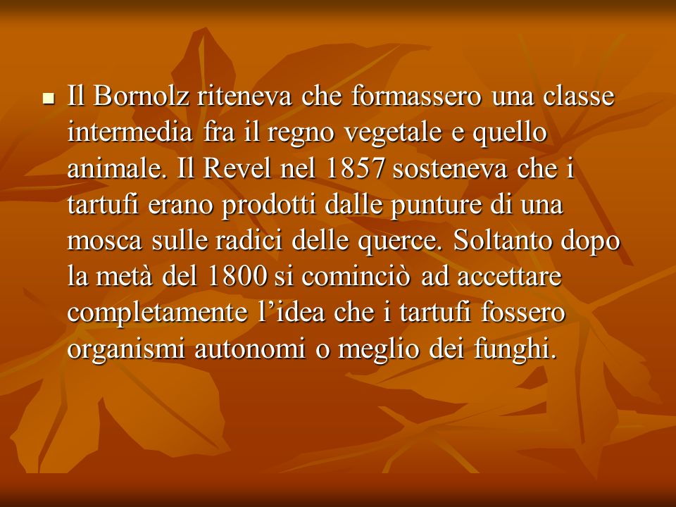 Il Bornolz riteneva che formassero una classe intermedia fra il regno vegetale e quello animale.