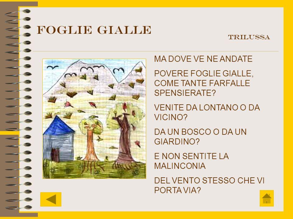 FOGLIE GIALLE MA DOVE VE NE ANDATE