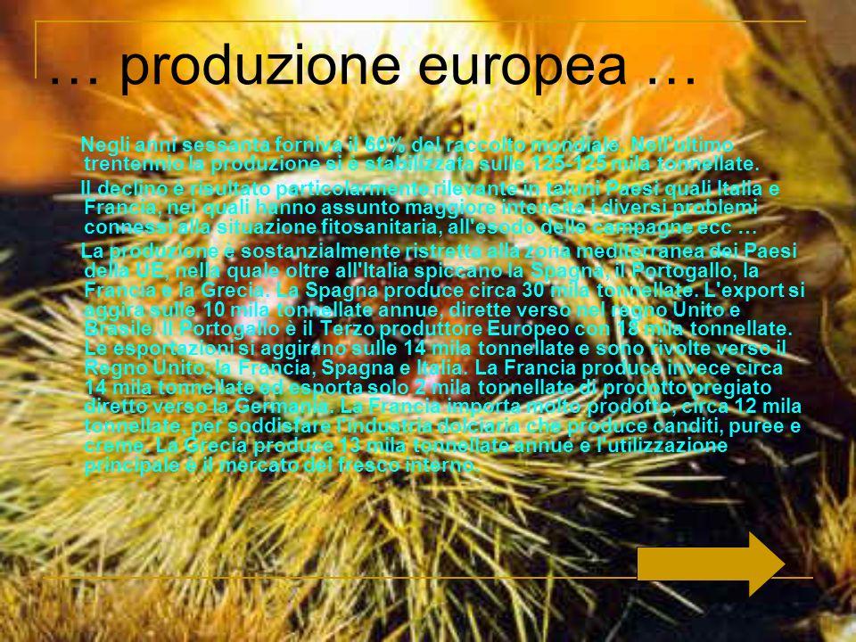 … produzione europea …