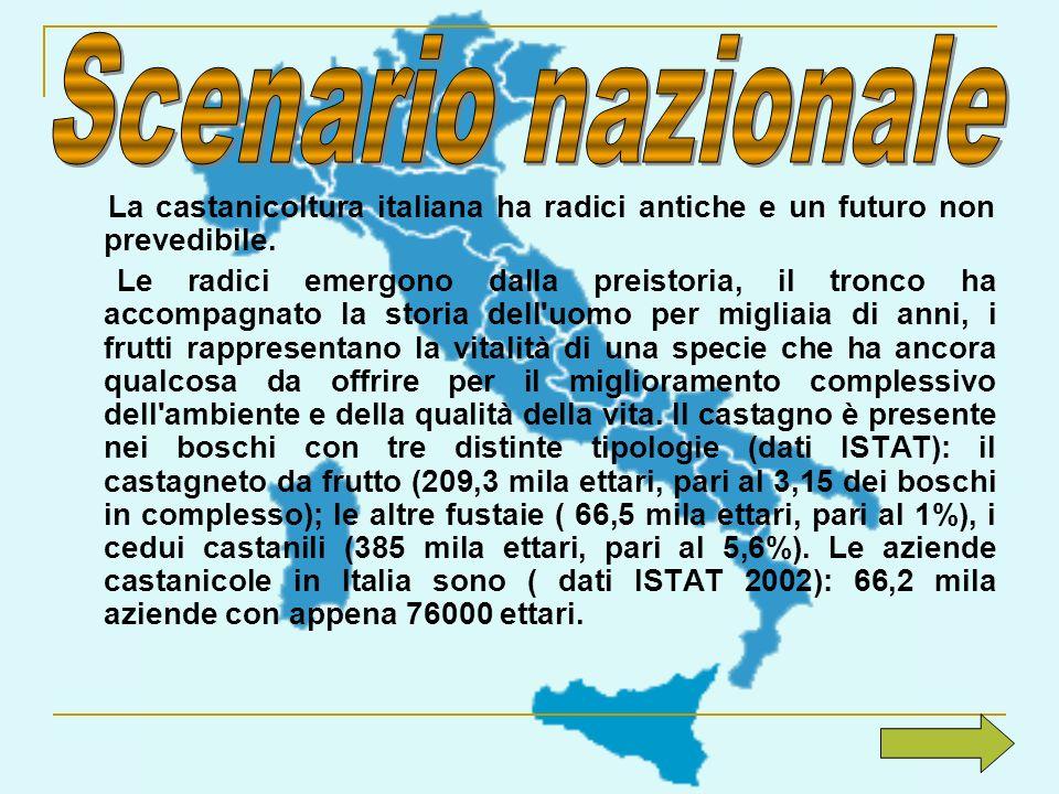 Scenario nazionale La castanicoltura italiana ha radici antiche e un futuro non prevedibile.