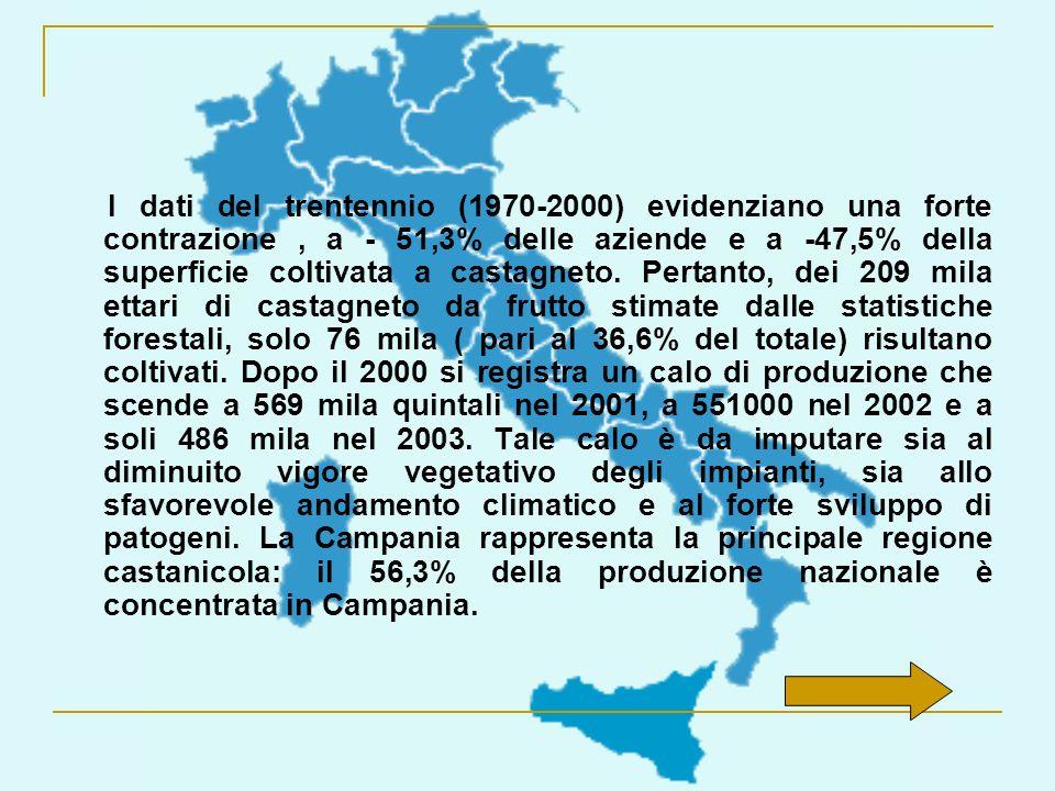 I dati del trentennio (1970-2000) evidenziano una forte contrazione , a - 51,3% delle aziende e a -47,5% della superficie coltivata a castagneto.