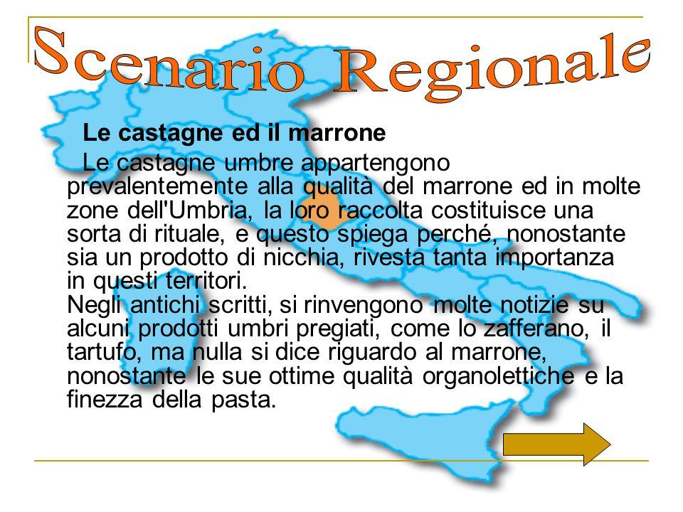 Scenario Regionale Le castagne ed il marrone