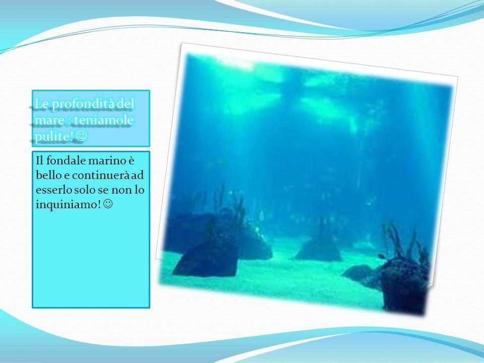 Le profondità del mare : teniamole pulite! 