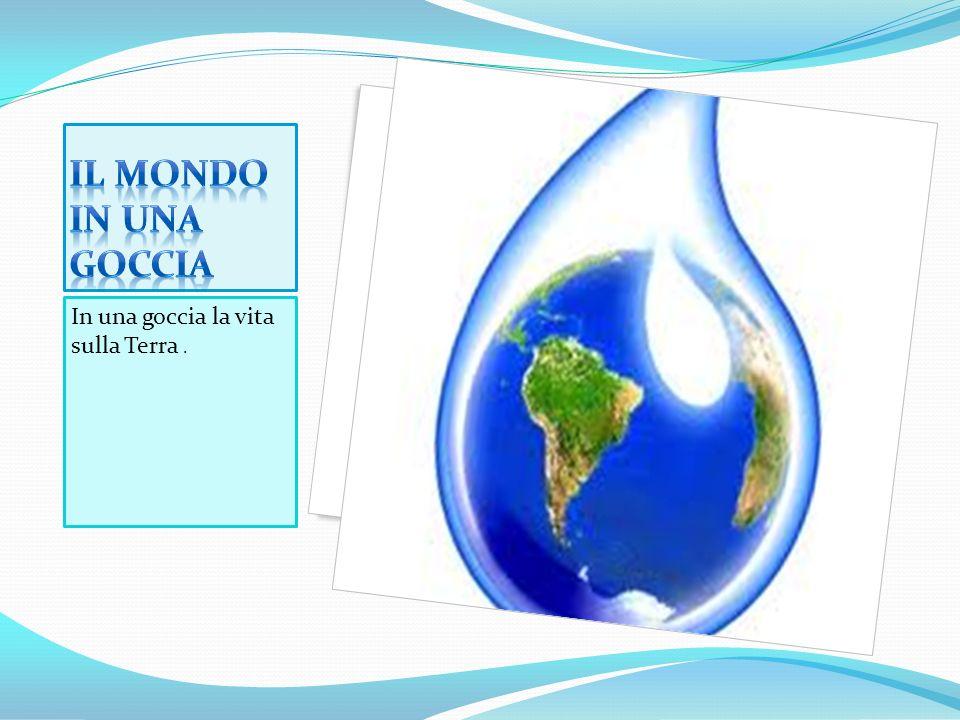 Il mondo IN UNa goccia In una goccia la vita sulla Terra .