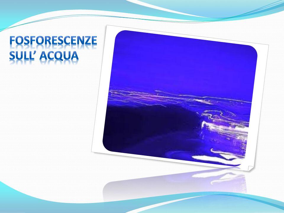 Fosforescenze SUll' acqua
