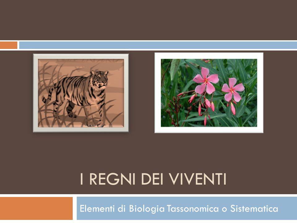 Elementi di Biologia Tassonomica o Sistematica