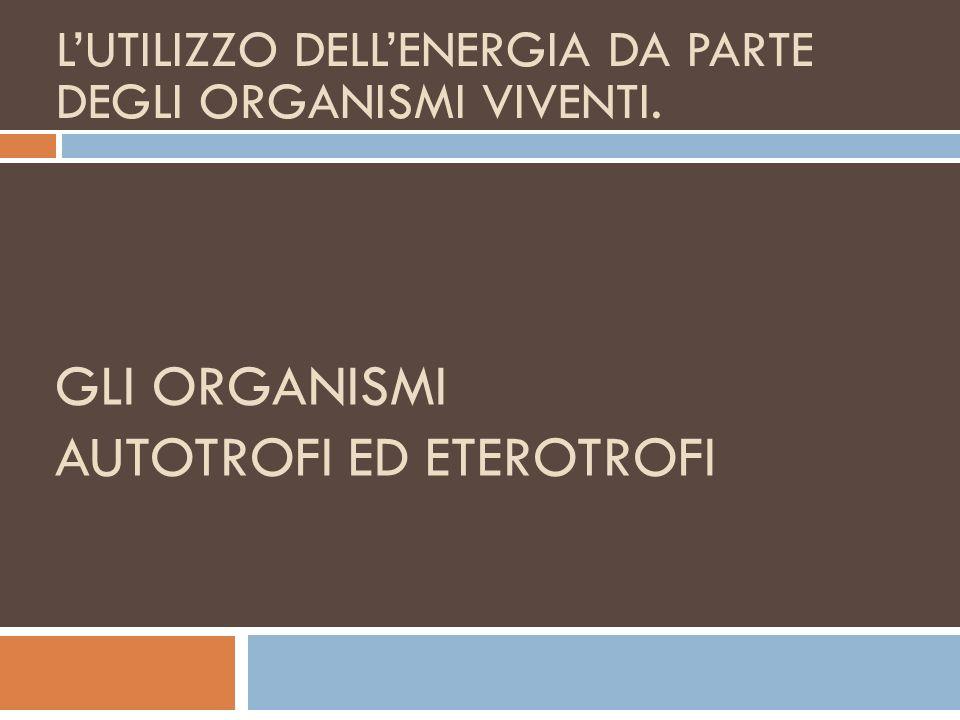 Gli organismi AUTOTROFI ED ETEROTROFI